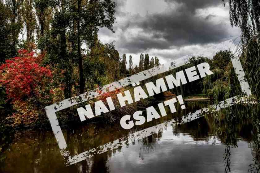 Geschichte eines erfolgreichen Widerstandes – Hoffnung für den Hambacher Forst