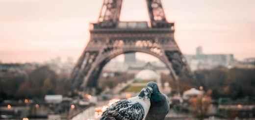 Der kommende Aufstand ist ein politischer Essay aus Frankreich. (Symbolfoto: Fabrizio Verrecchia, Unsplash.com)