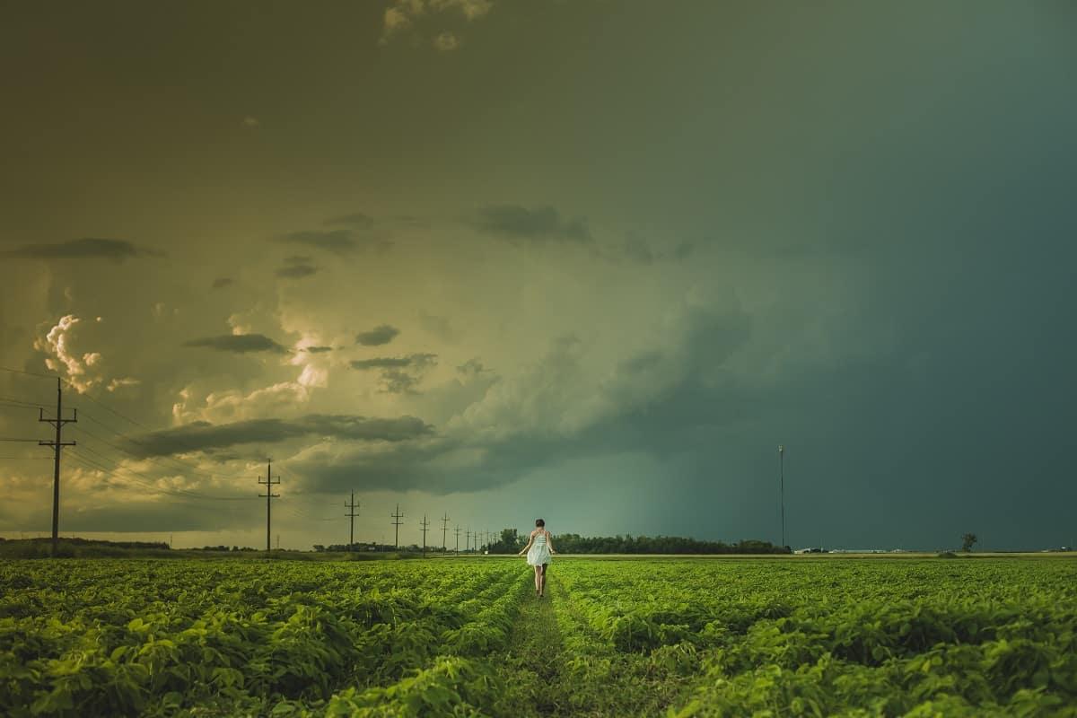 Dunkle Wolken ziehen über Julian Assange und der Pressefreiheit auf, wie über diesem Kleefeld in Niverville, Canada. (Foto: Matthew Henry, Unsplash.com)