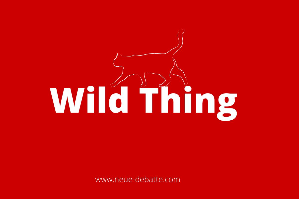 Archäologie der Gewalt. Wild Thing und Ethnologie. (Grafik: Neue Debatte)