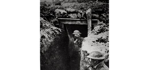 Im Westen nichts Neues. Soldaten mit Gasmasken im Ersten Weltkrieg. (Illustration: Neue Debatte; Foto: William E. Moore und James C. Russell)