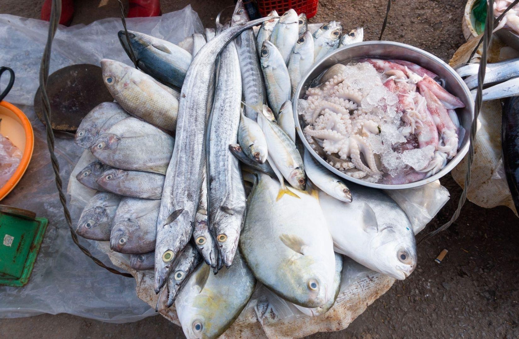 Fische, die keine Stimme mehr haben, auf einem Markt in Hanoi. (Foto: Daniel Lee, Unsplash.com)