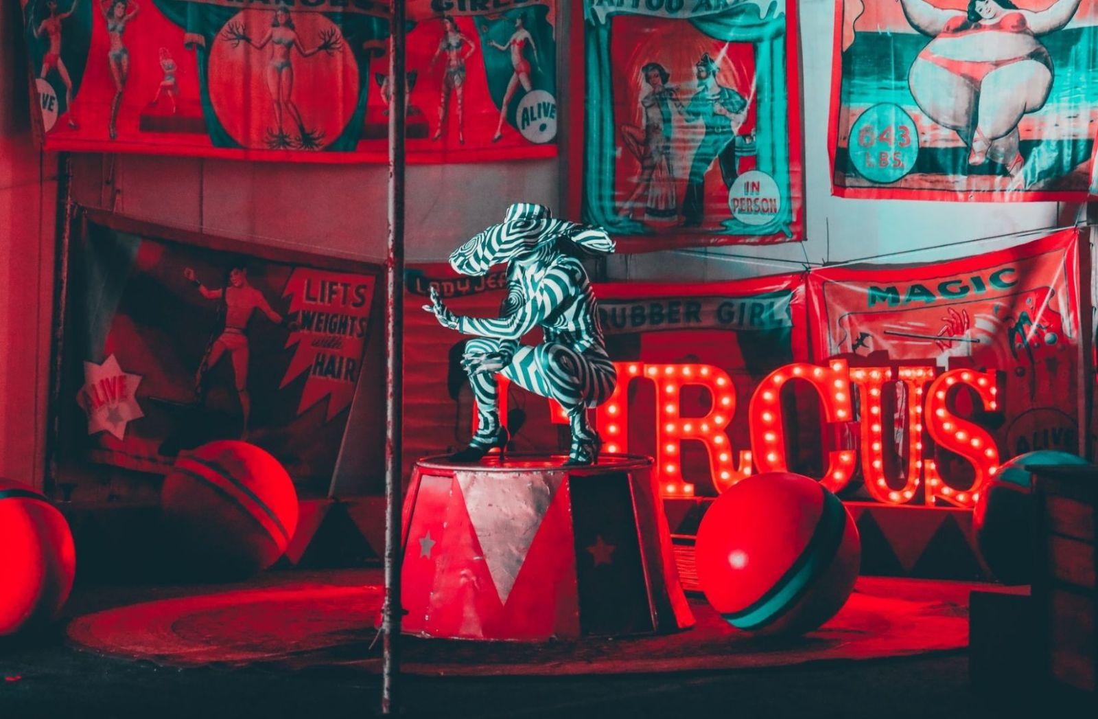 Der Traum im Zirkus der Visionen. (Foto: Joshua Coleman, Unsplash.com)