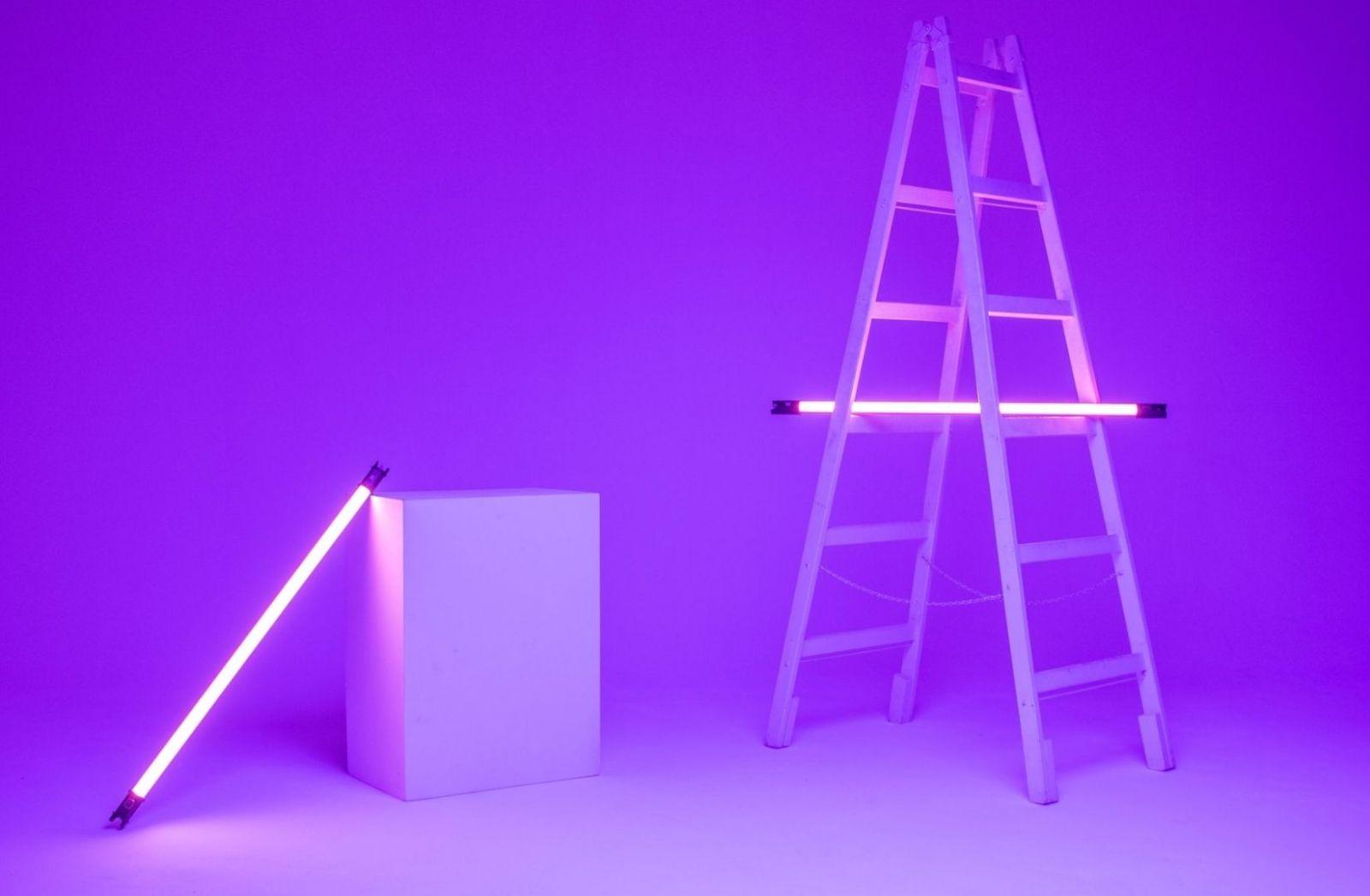 Leiter und Kunstlicht in Pink. (Foto: Daniel Koponyas, Unsplash.com)