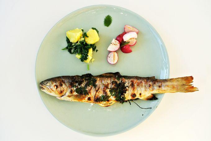 foodblog, fit essen, TCM Rezepte, Fisch, Grillen, besser essen
