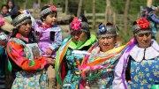 Die Mapuche