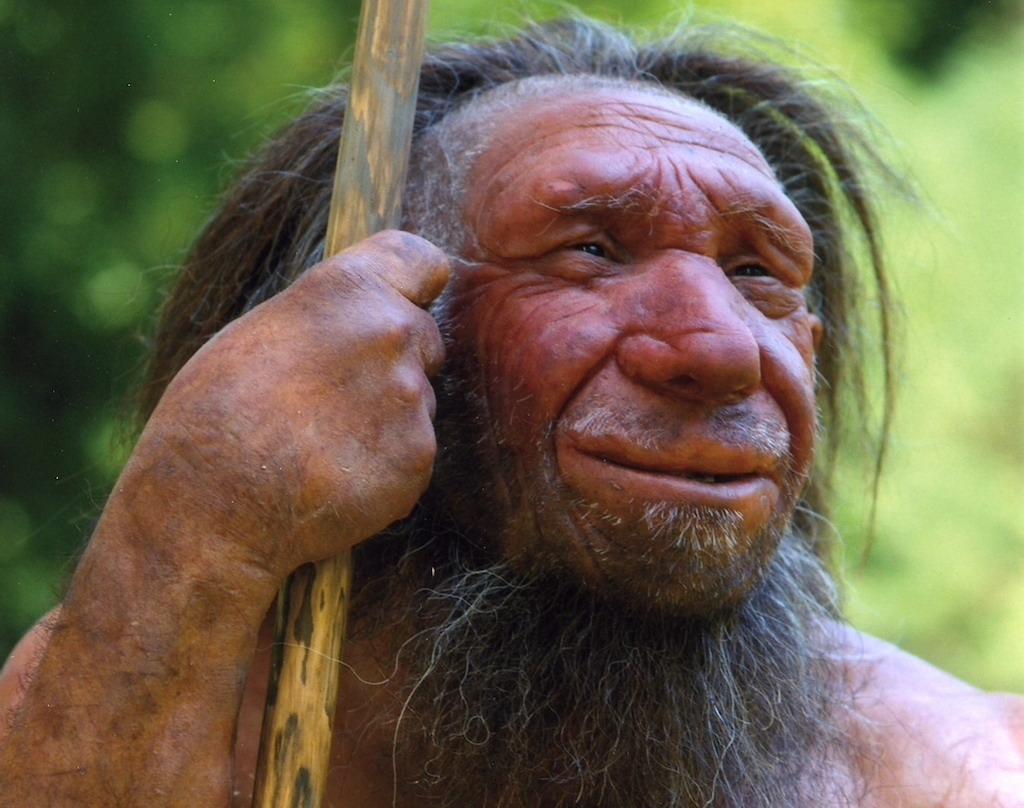 """Mettmann –Der bekannteste Neandertaler Deutschlands hat womöglich die falsche Hautfarbe - und wird deswegen nach einem Bericht des """"Spiegel"""" (Samstag) ausgetauscht. Es handelt sich um die Nachbildung eines lächelnden älteren Mannes, der über die Jahre zum Maskottchen des Neanderthal Museums in Mettmann geworden ist. Neueste Forschungsergebnisse legen nun allerdings nahe, dass der Senior mit dem Speer - genauso wie viele andere Neandertaler-Nachbildungen - einen ganz anderen als den bleichen Teint haben müsste."""