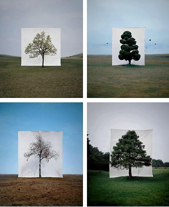 Slavoj Žižek. Tree series by Myou Ho Lee.