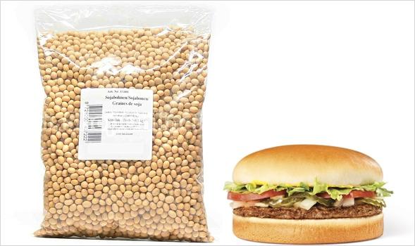 skeuomorph food