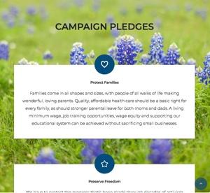 Wahlversprechen