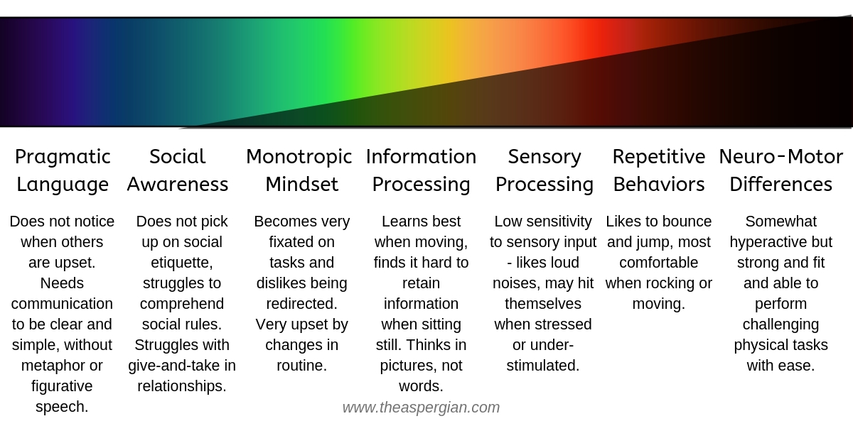 Same image as above with darkened or lightened colors and specific descriptions of each area. This person is different from Person 1 and 2 because they don't notice others when they are upset, doesn't pick up on social etiquette, dislikes being redirected from a task, learns best when moving, has low sensitivity to sensory input, likes loud noises, may hit themselves when stressed or understimulated, like to bounce and jump, and are somewhat hyperactive but strong and fit and can perform challenging physical tasks with ease.