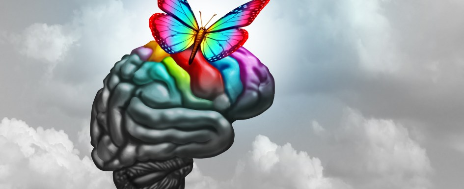 Drawing of a black-and-white brain with a rainbow butterfly landing on it making it colorful