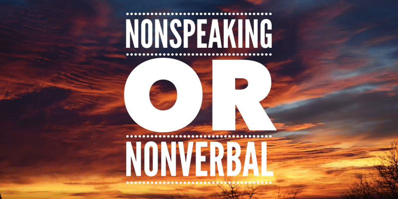 NonSpeaking or NonVerbal. Image has a colorful sky as the background.