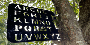 an RPM rapid prompting method letterboard stencil is in a tree with sunlight shining through the letters. Photo credit by autistic advocate matthew rushin.