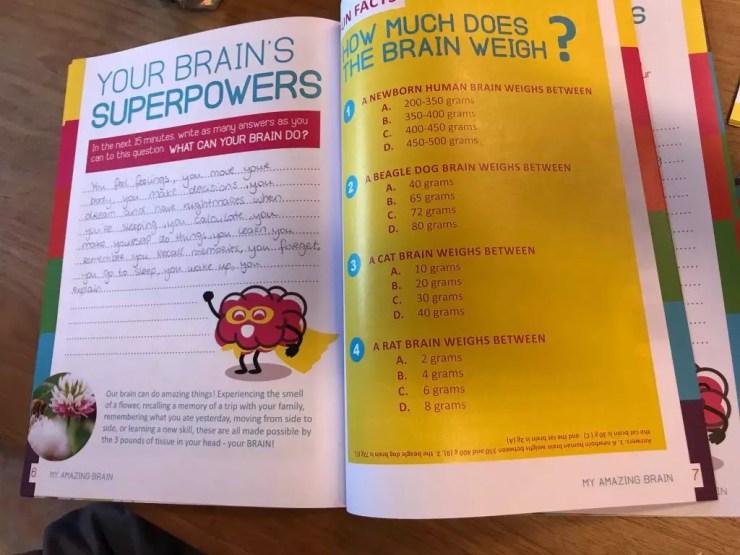 Example of workbook my amazing brain magazine in the classroom