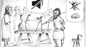 El experimento del cerdo chillón de Galeno