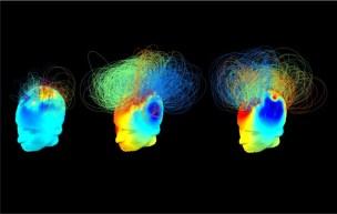 Resultado de imagen de En el cerebro conexiones sin fin