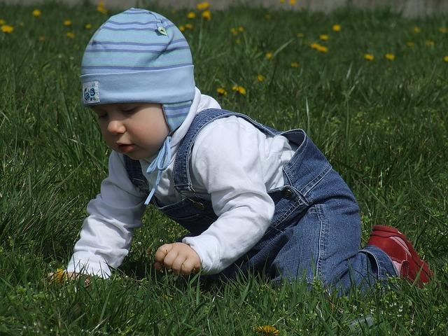 toddler-1083863_640