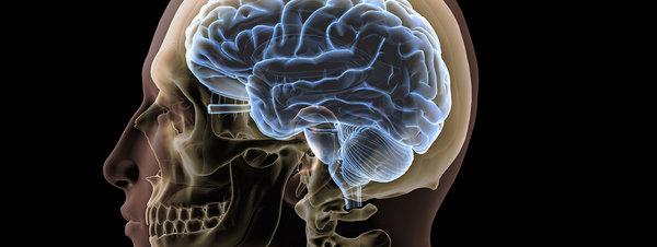 Neurociencia Realmente nos ayuda a conocer mejor nuestro cerebro