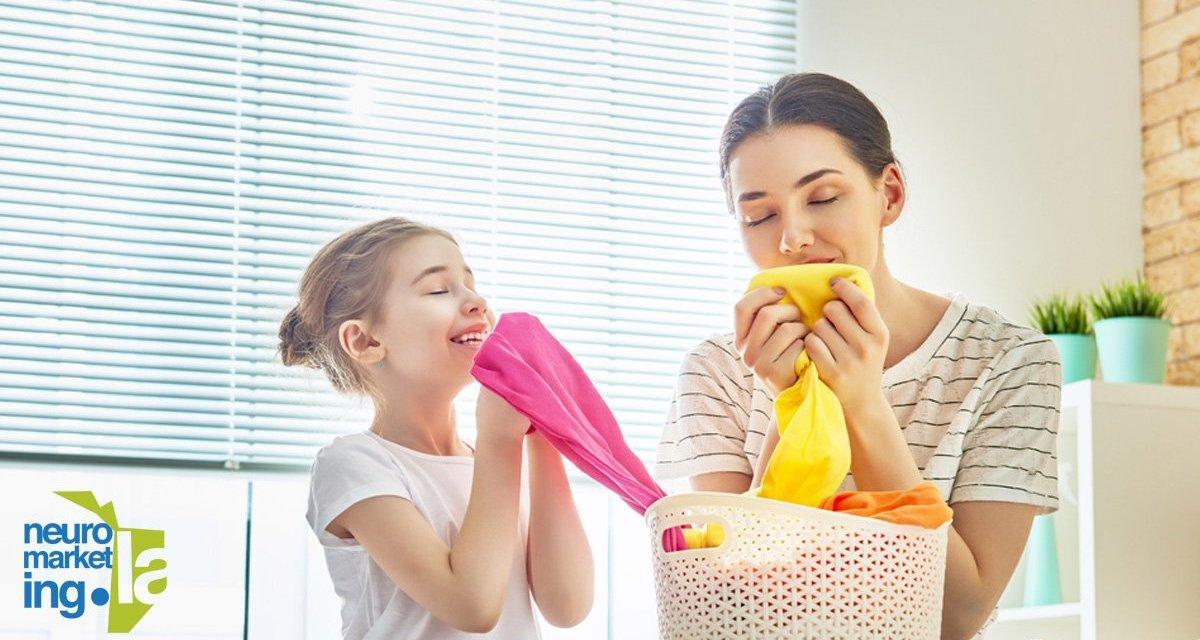 Sentido del olfato: un sentido conectado a nuestra memoria