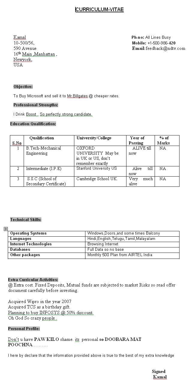 how a job resume should look how a resume should look should i