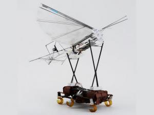 Watch a robotic cockroach launch a robotic bird