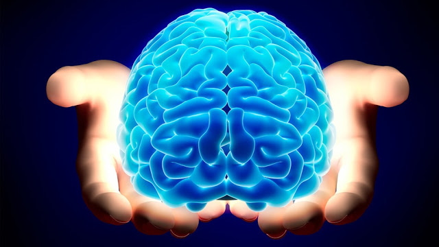 Did My Brain Make Me Do It? Neuroscience and Free Will (Part 1)