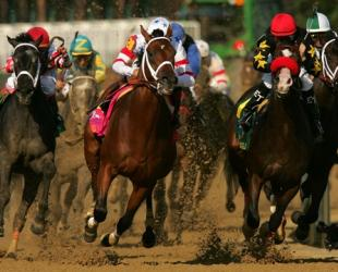 Swarm Intelligence Successfully Picks Kentucky Derby Superfecta: Report