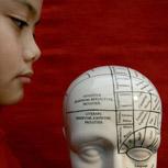 Why study Philosophy of Neuroscience at VU Amsterdam?
