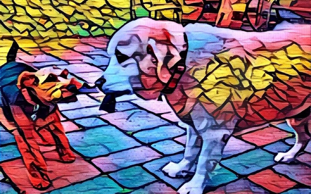 A new app uses AI to turn your photos into art — here's how it works