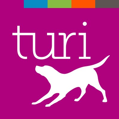 Machine learning startup Dato changes name to Turi after trademark battle