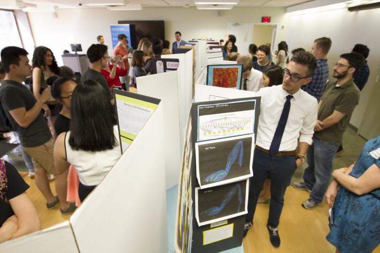 Brainy high school students show off their Columbia research