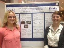 Students win ISU neuroscience competition with Alzheimer's research