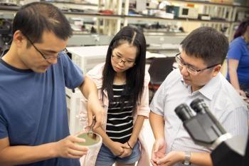 Scientist Develops Human Brain-Inspired Microchip