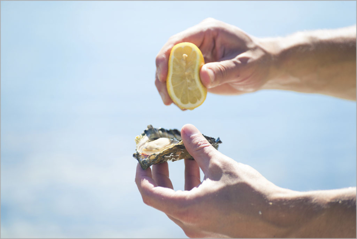 IoT solution brings a boost to Tasmania's oyster farms