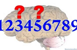 The numbers 1 through 9 are shown over a brain with two question marks over 3 and 5.
