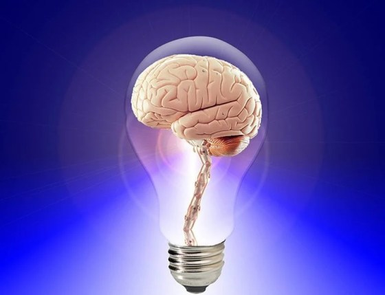 New Ideas Change Your Brain Cells