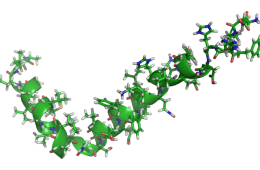 This is a computer generated model of amyloid beta.
