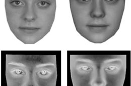 The image shows the facial representations.