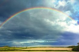 The image shows a rainbow over a field.
