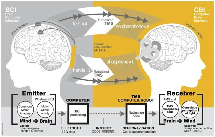 Researchers Demonstrate Direct Brain-to-Brain Communication in Human Subjects