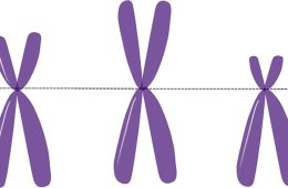 This image shows three purple X's.