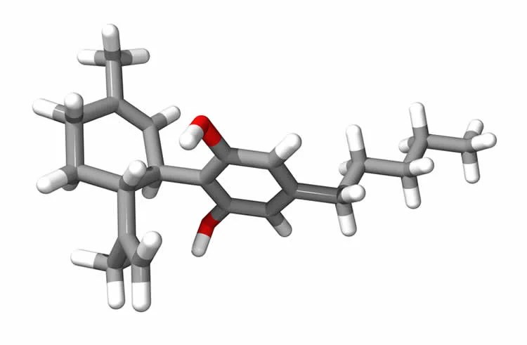 This is a 3D model of the molecular structure of cannabidiol.