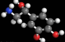 This image shows the molecular structure of norepinephrine.