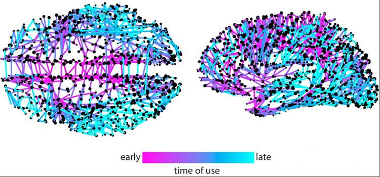 Twitter Meme Mapping Method Reveals Neural Networks for Higher Cognition When Applied to Brain