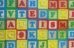 This image shows the word Autism made up with building blocks.