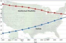 This graph shows the rise in autism diagnoses in the USA.