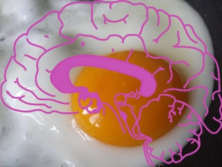 This image shows a fried egg with a pink brain over the top.