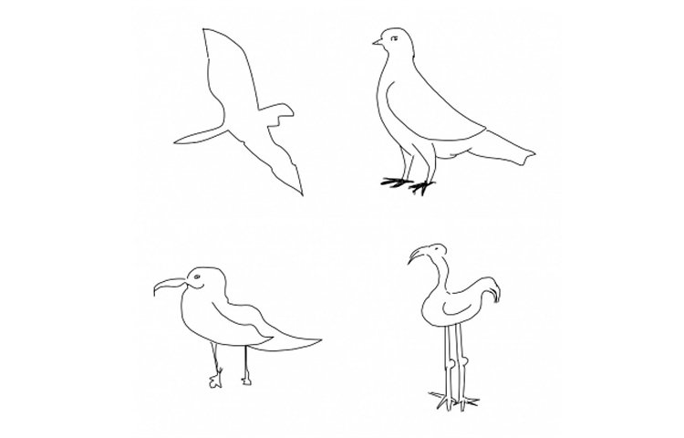 This image shows a drawing of four birds.