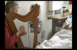 This image shows a woman playing a harp.